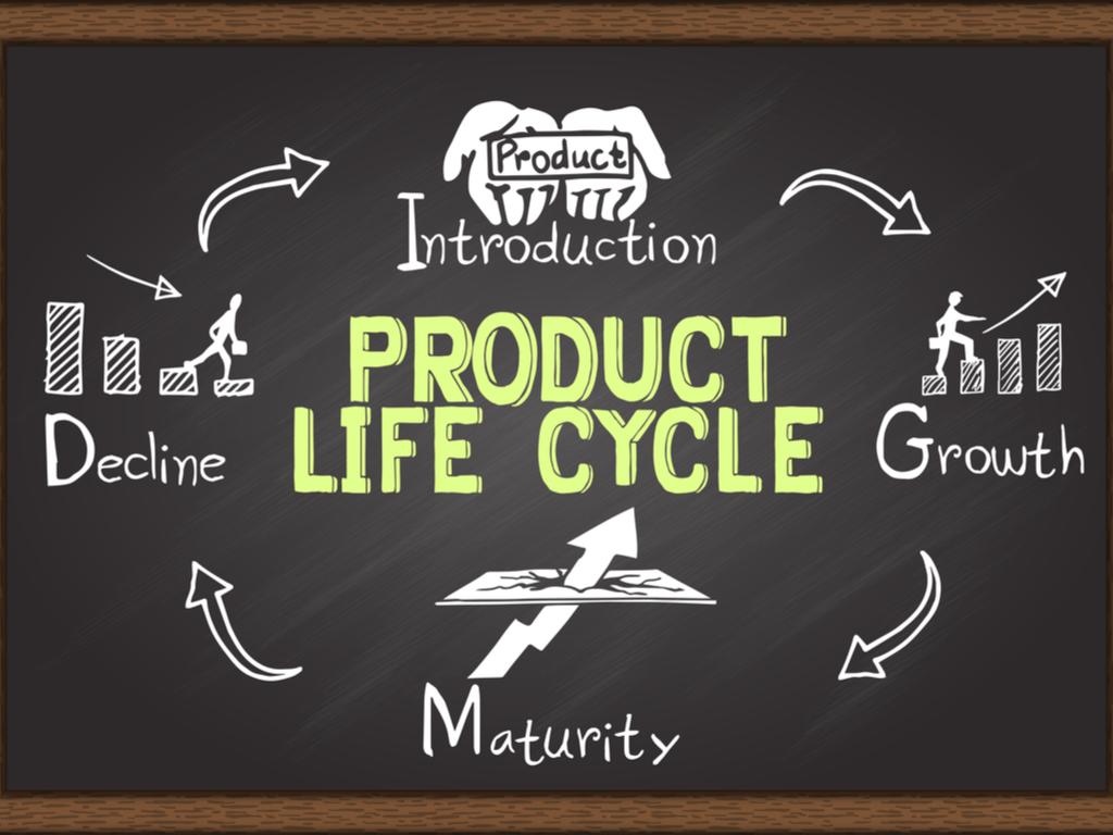 ciclo de vida